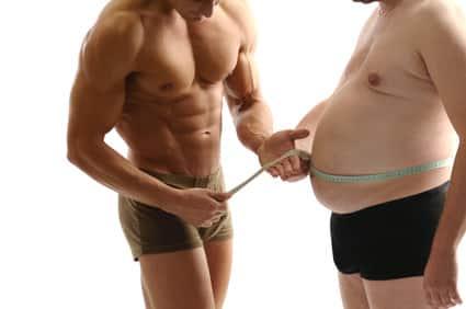 Photo of Der Aufbau der Muskeln oder wie du Muskeln aufbaust