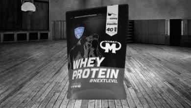 Photo of Mammut Whey Protein – Unser Test und Erfahrungen zur neuen Version (Nextlevel)