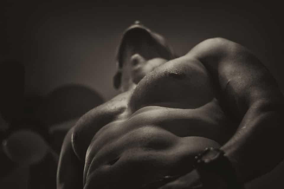 Menü, um Muskelmasse zu gewinnen und Fett zu verbrennen